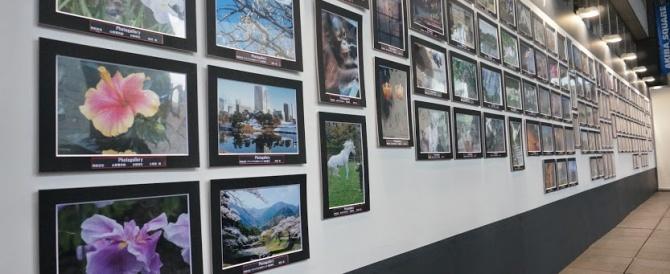 2014年11月の「ソニーフェア」フォトギャラリー出展作品を紹介しよう!