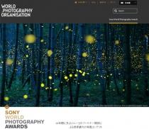 ソニーが支援する世界最大規模の写真コンテスト「Sony World Photography Awards 2017」受賞作品発表。ウルフ99(@WolfRXM2)さんの作品が日本部門賞に(゚∀゚)!