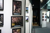 2017年夏「ソニーフェア大崎」のフォトギャラリー出品作品を紹介。