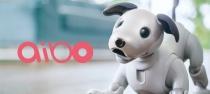 今年秋にaiboに動画機能がつくかもしれない。次回のaiboの予約販売は2018年4月3日(火)20時。