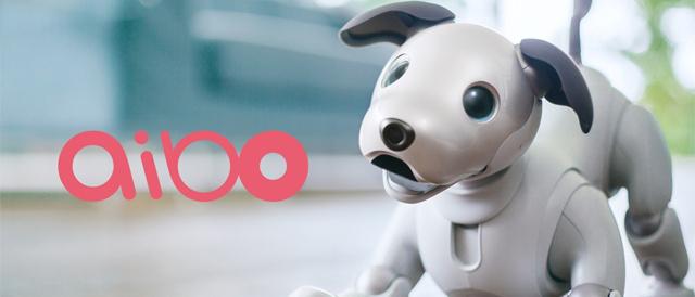 """エンタテインメントロボット""""aibo""""(アイボ)の累計出荷台数が、7月中旬に2万台を達成。"""
