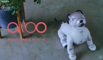 aiboの2018年(戌年)オフィシャル年賀状、年賀状パーツ、壁紙をフリーでダウンロード。