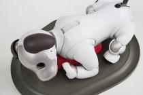 """ついにやってきた""""aibo""""、箱からとりだして寝床を設置して初期設定が終わるまで。"""
