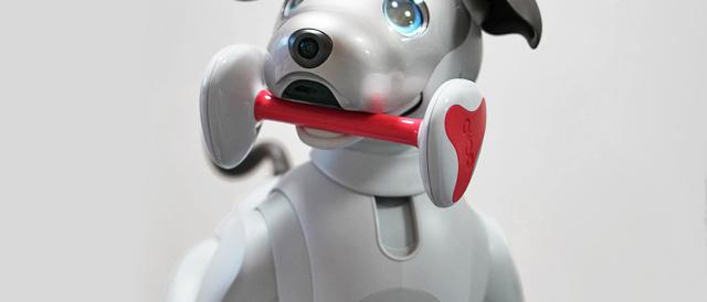"""最新技術が詰まった""""aibo""""が、どういうふうに出来ているのかを観察してみる。"""