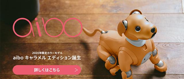aiboに、2020年限定の特別カラー「キャラメル エディション」登場!