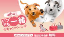 aiboストラッププレゼントやキャリーバッグがaibo本体同時購入で安くなる「aiboといつでも一緒キャンペーン」を開催。
