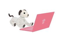 5月23日(土)と5月31日(日)に、「aiboビジュアルプログラミング」のオンラインセミナーを、Facebookライブで配信。