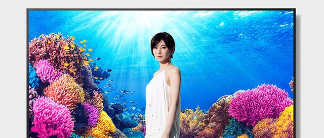 ソニーストアで、ワイヤレスノイズキャンセリングステレオヘッドセット「WF-1000XM3 や、4K対応テレビ ブラビア「X9500H / X8500H / X8000Hシリーズ」の5モデルを値下げ。
