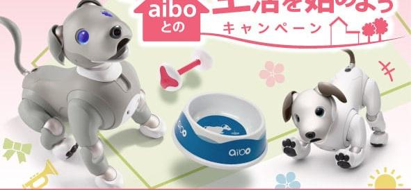 「aiboとの生活を始めようキャンペーン」を2021年6月30日まで開催中。